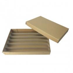 Histology Cassette Storage Box & Dividers